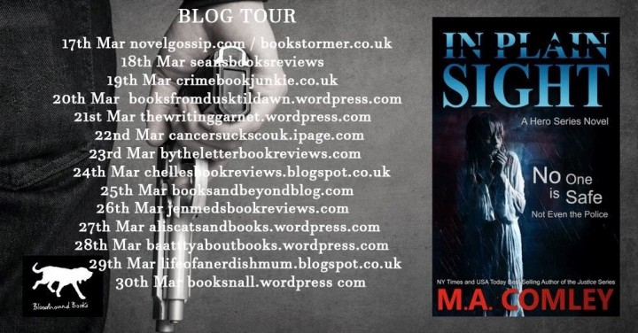 #BlogTour Review: In Plain Sight by M.A. Comley @Melcom1; @Bloodhoundbook