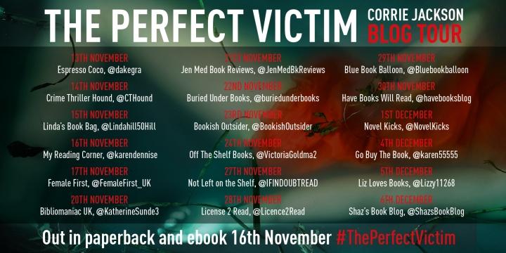 Perfect Victim_Blog Tour Banner_v1 (2)