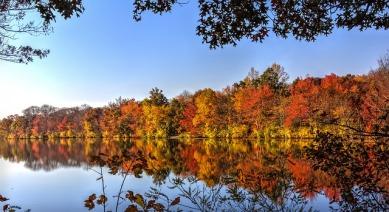 autumn-581074_640