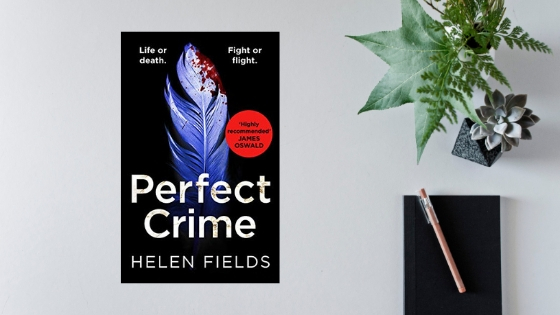 Perfect Crime by Helen Fields @Helen_Fields @AvonBooksUK #review